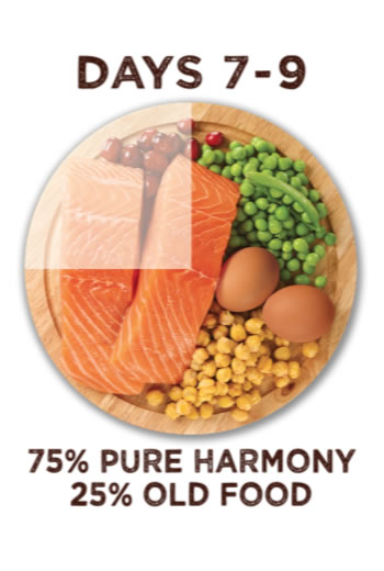 Between days seven and nine you have to feed your pets with seventy five percent pure harmony food and twenty five percent old food